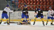 В сборную Украины вызваны 29 хоккеистов. Команда готовится к турниру