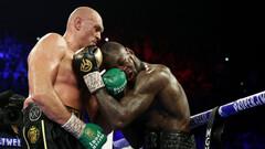WBC санкционирует бой Фьюри - Уайлдер: «Это тоже интересный поединок»