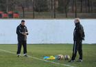 Тренеры Шахтера отправились в Тольятти
