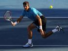 ATP Роттердам. Дель Потро разгромил Троицки в четвертьфинале