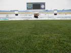 Поле стадиона Авангард готово к большому футболу + ФОТО