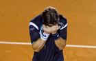 ATP Акапулько. Феррер выигрывает титул