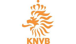 Евро-2012. Группа В. Сборная Голландии