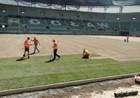 На стадионе Вроцлава началась укладка газона