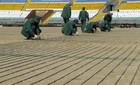 На стадионе Авангард идет подготовка к укладке газона