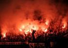 По безопасности Евро-2012 Украина готова на 100%