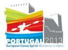 Мужская каноэ-четверка – бронзовый призер чемпионата Европы