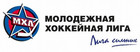 ОФИЦИАЛЬНО: Молодая гвардия вступила в МХЛ