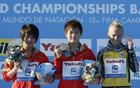 Юлия Прокопчук завоевала бронзу в прыжках с вышки