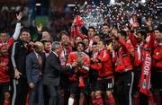 Бенфика — обладатель Кубка португальской лиги