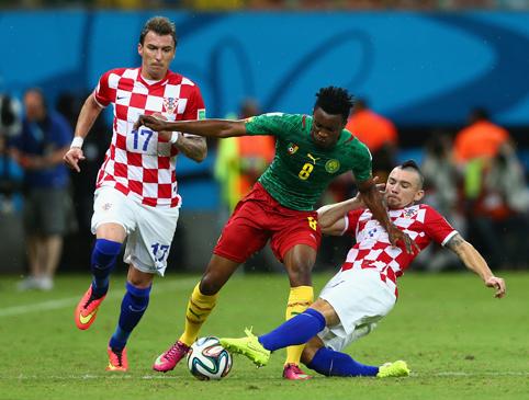 Хорваты приручили драчливых «неукротимых львов»