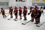 Украинская хоккейная лига создана не будет