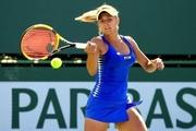 US Open. Молчанов и Цуренко - во втором раунде квалификации