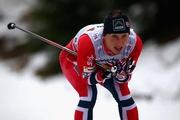 Сочи-2014. Марит Бьорген вырывает победу в скиатлоне