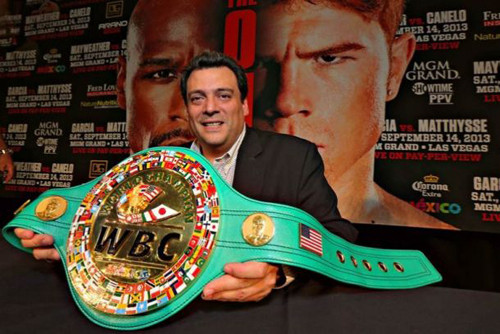 Президент WBC объяснил, за что Вавжика внесут в ТОП-15