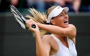 Шарапова выиграла турнир в Брисбене