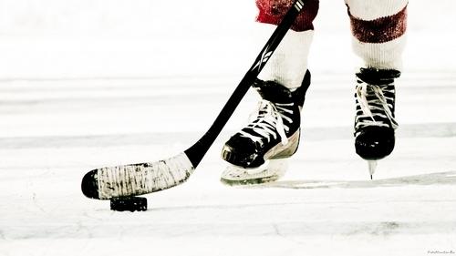 8-летние хоккеисты после матча устроили массовую драку