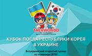 Всеукраинский турнир по тхэквондо в Киеве. ВИДЕО LIVE