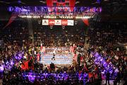 Боксерский уикенд. 17-19 июня 2016 года