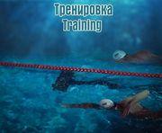 30 дней плавания с Андреем Говоровым. День 13