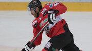 Сборная Австрии приедет в Киев без игроков НХЛ