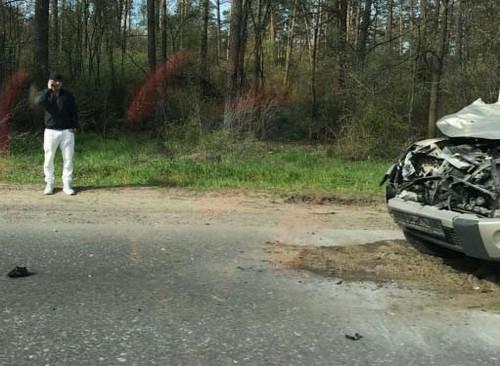 Узелков в ДТП сбил лося и разбил свою машину