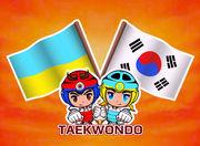 В Киеве прошел турнир по тхэквондо Кубок Посла Республики Корея