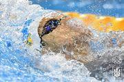 13 плавців представлятимуть Україну на чемпіонаті світу з водних видів