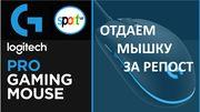 Конкурс от Sport.ua: получи мышку за репост в социальной сети!