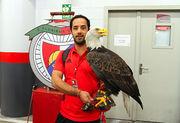 Прощальный от Велозу, юный орел на стадионе Света и летнее Динамо