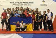 Украинские самбисты завоевали в Сербии 13 медалей