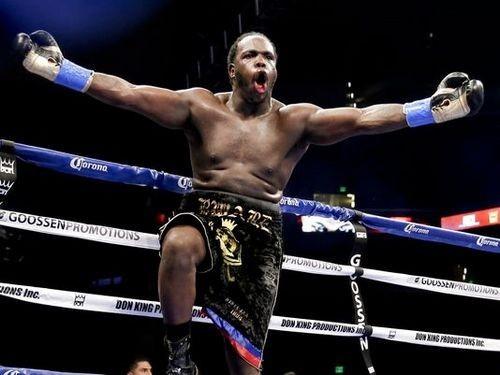 WBC не даст Стиверну титул без проведения боя