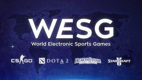 Группы Чемпионата Мира WESG. Украина в группе D