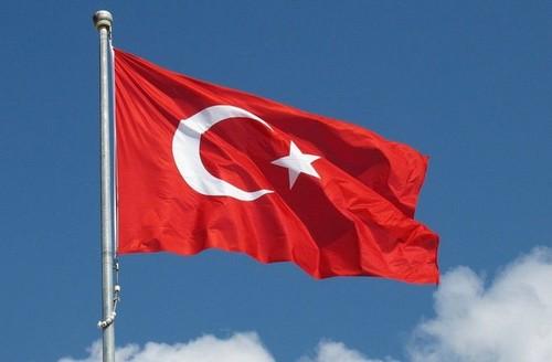 Федерация футбола Турции хочет, чтобы у нее арендовали судей на сборах