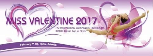 Украинские гимнастки отправятся на турнир Мисс Валентин 2017