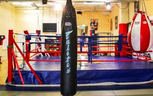 Виды боксерских груш и мешков: принципиальные различия