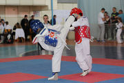 В Киеве стартует турнир по тхэквондо ВТФ Кубок Посла Республики Корея