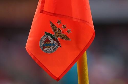Cелекционеры Динамо посетили матч Бенфика — Тондела