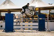 Конкур. Flying Horse Cup, 2-й етап. Смотреть онлайн. LIVE трансляция