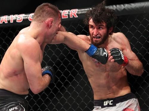 Известного бойца уволили из UFC из-за отказа драться с россиянином