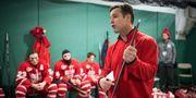 НХЛ. Рейнджеры Нью-Йорка определились с новым тренером