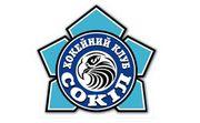 Инициативная группа просит Кличко возродить ХК Сокол