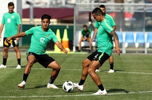 Австралия — Перу. Прогноз и анонс на матч чемпионата мира