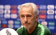 Тренер сборной Австралии подал в отставку