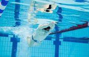 Украинец Говоров установил мировой рекорд на дистанции 50 м