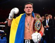 В Украине откроют музей боксерской славы и включат в него Усика