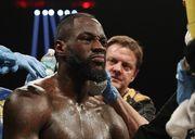 Президент WBC: «Уайлдер будет драться с Фьюри в следующем поединке»