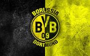 Девять футболистов дортмундской Боруссии отравились кебабом
