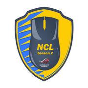 Национальная киберспортивная лига. Детали и огромный призовой фонд