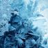 ice_Bodya